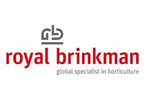 Brinkman.com